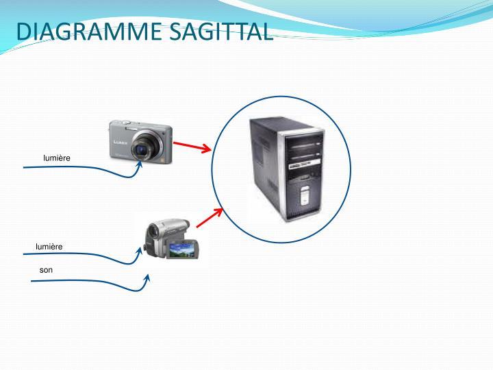 DIAGRAMME SAGITTAL