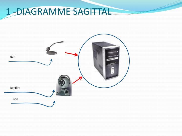 1 -DIAGRAMME SAGITTAL