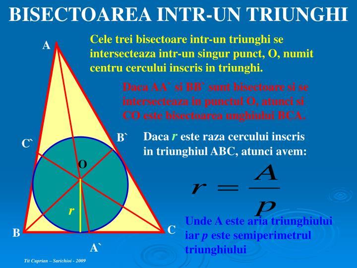 BISECTOAREA INTR-UN TRIUNGHI