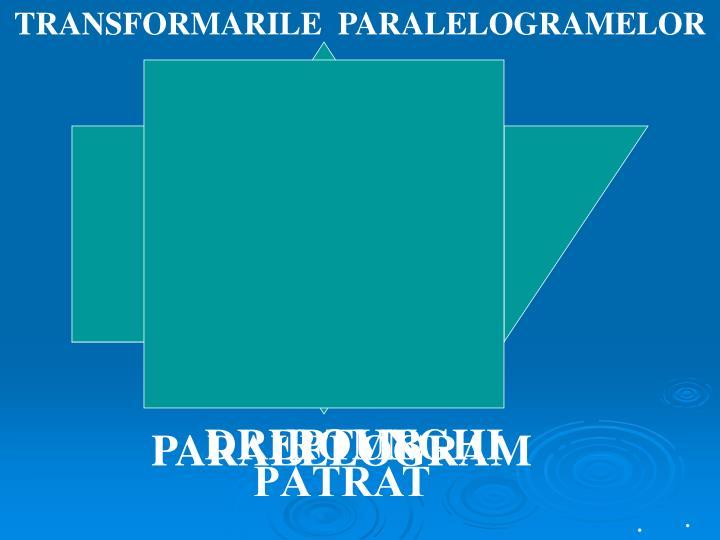 TRANSFORMARILE  PARALELOGRAMELOR