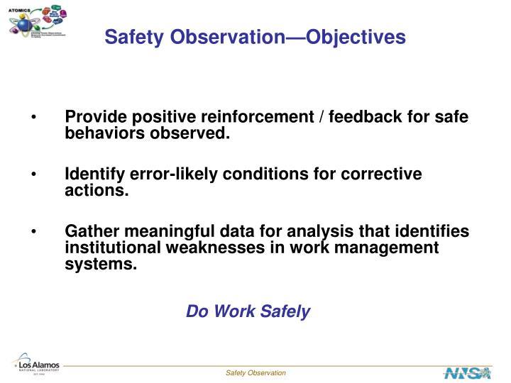 Safety Observation—Objectives
