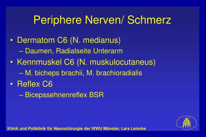 Dermatom C6 (N. medianus)