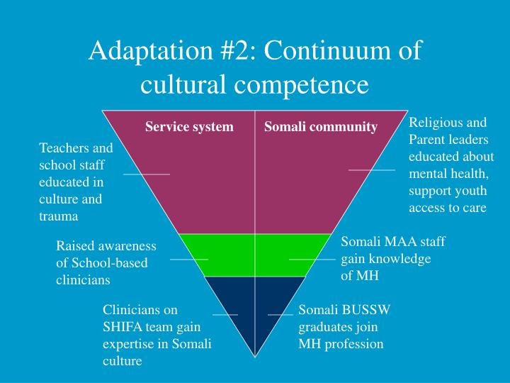 Adaptation #2: Continuum of cultural competence