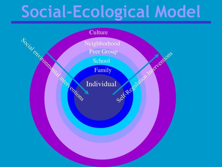 Social-Ecological Model
