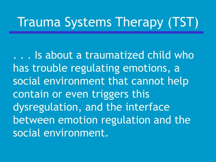 Trauma Systems Therapy (TST)