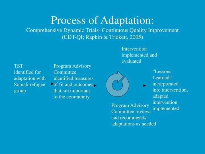 Process of Adaptation: