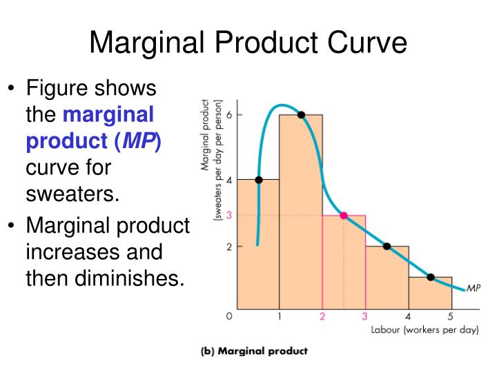Marginal Product Curve