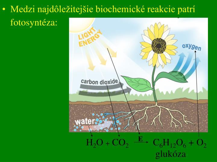 Medzi najdôležitejšie biochemické reakcie patrí