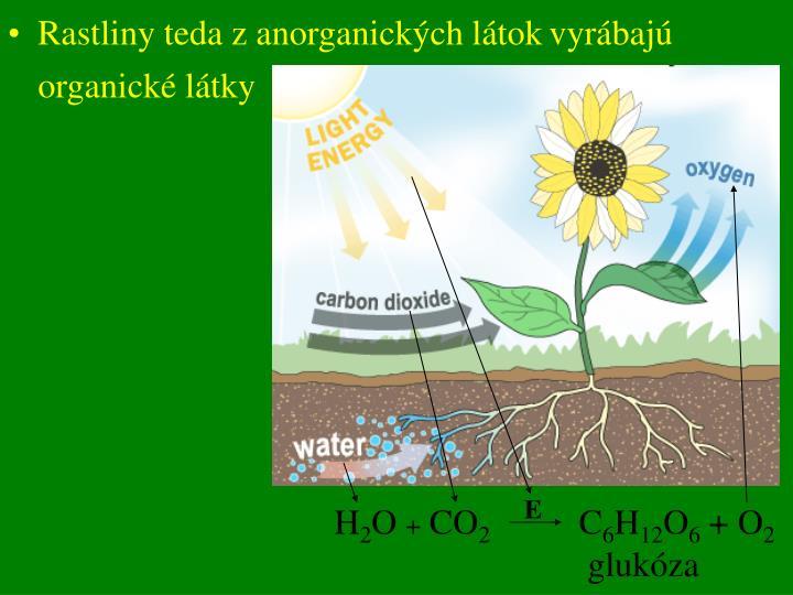 Rastlin