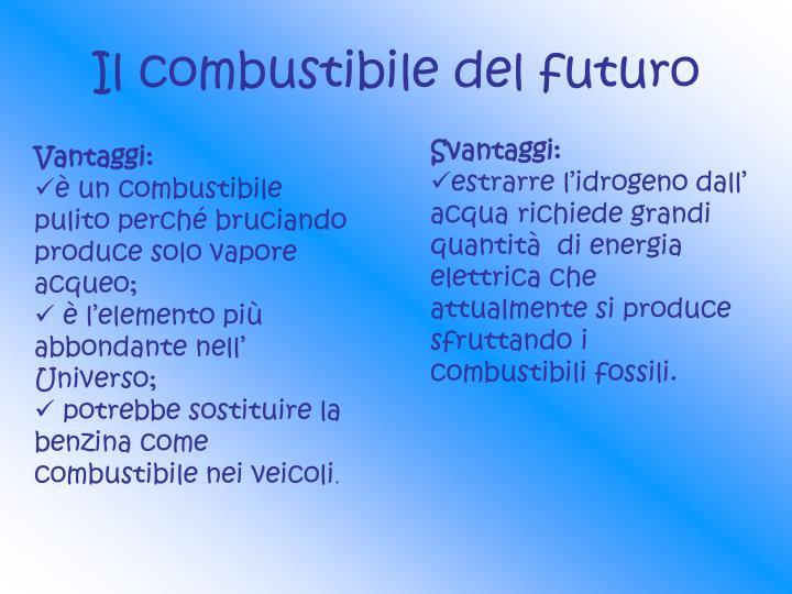 Il combustibile del futuro