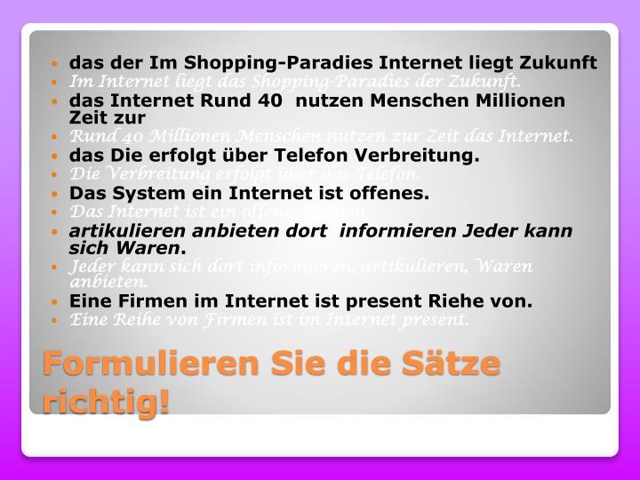 das der Im Shopping-Paradies Internet liegt Zukunft