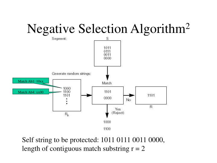 Self string to be protected: 1011 0111 0011 0000, length of contiguous match substring r = 2