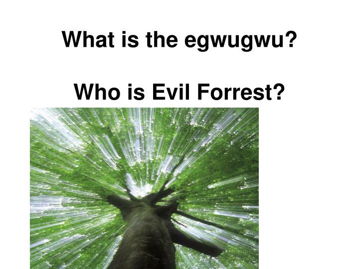 What is the egwugwu?