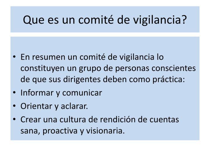 Que es un comité de vigilancia?