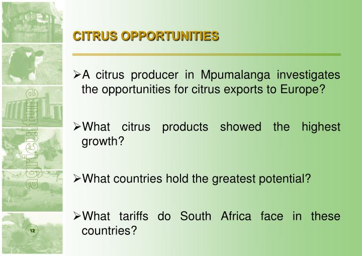 CITRUS OPPORTUNITIES