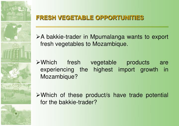 FRESH VEGETABLE OPPORTUNITIES