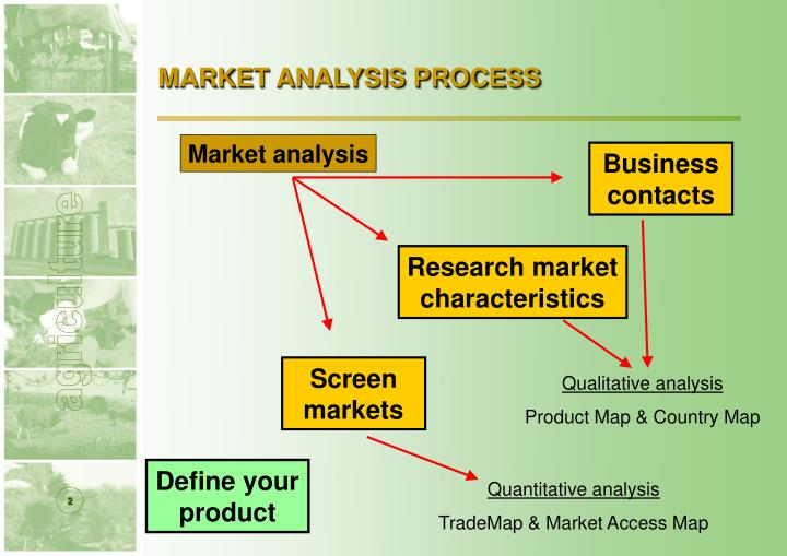 Market analysis process