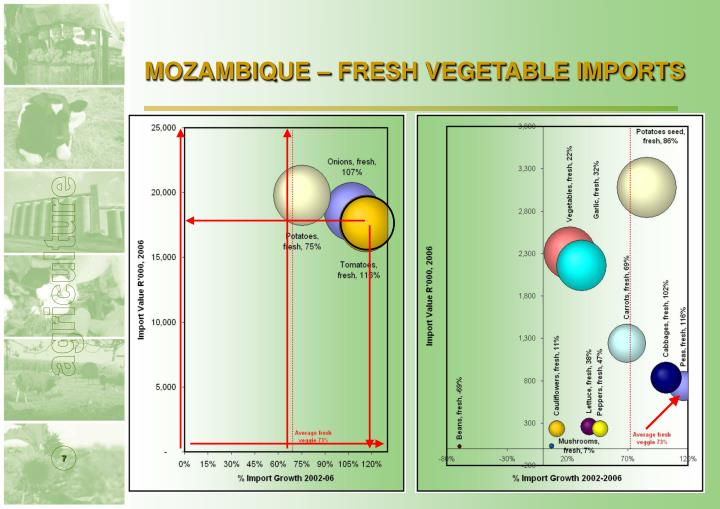 MOZAMBIQUE – FRESH VEGETABLE IMPORTS