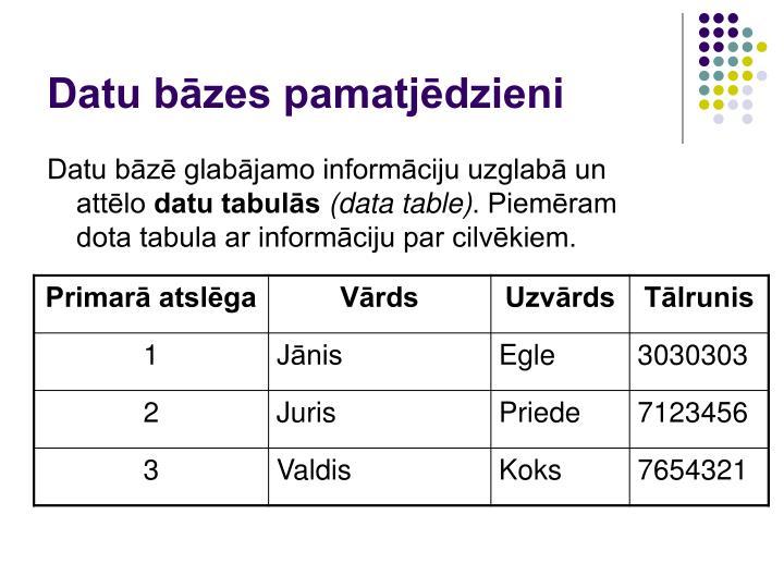 Datu bāzes pamatjēdzieni