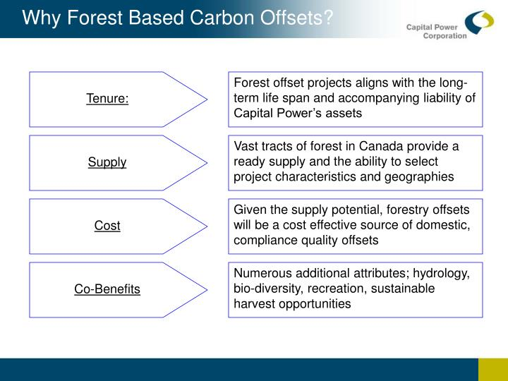 Why Forest Based Carbon Offsets?
