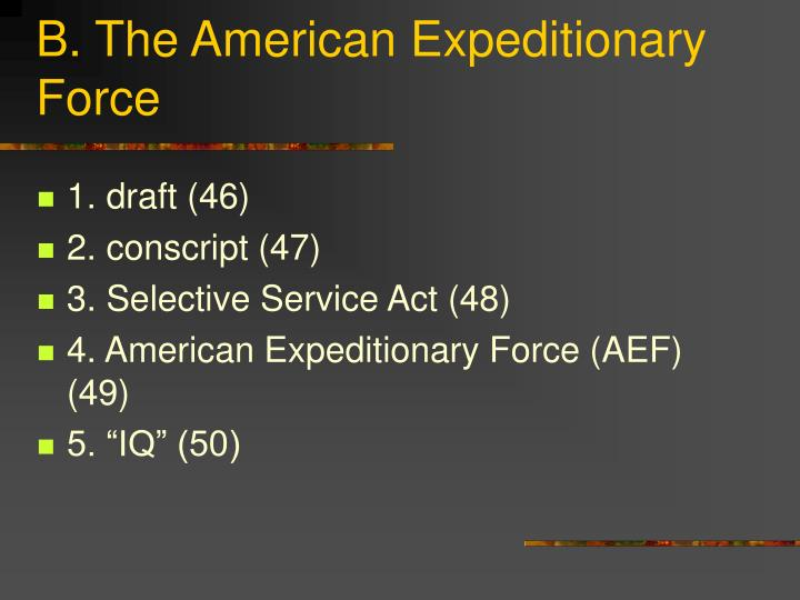 B. The American Expeditionary Force