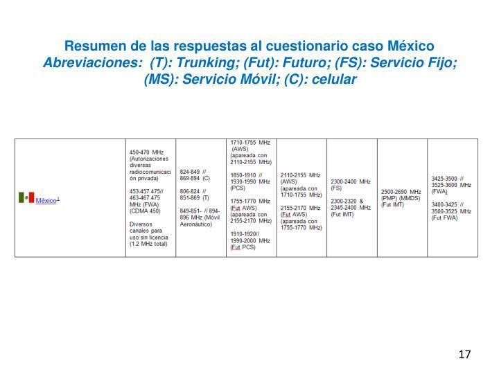 Resumen de las respuestas al cuestionario caso México