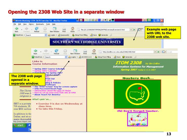 Opening the 2308 Web Site in a separate window