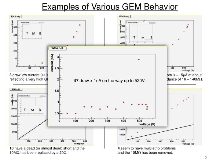 Examples of Various GEM Behavior