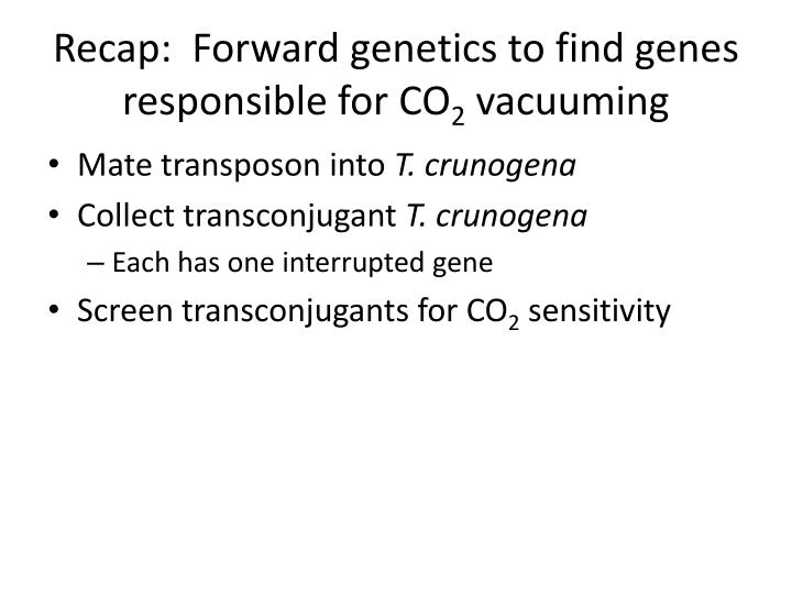 Recap:  Forward genetics to find genes responsible for CO