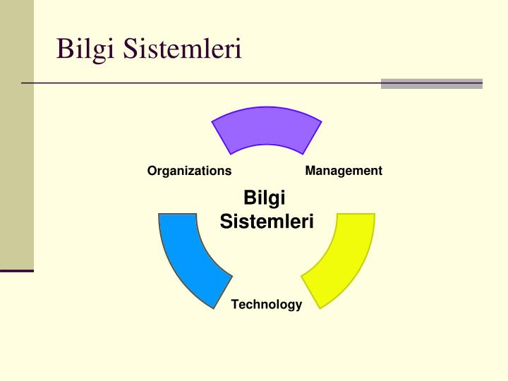 Bilgi Sistemleri