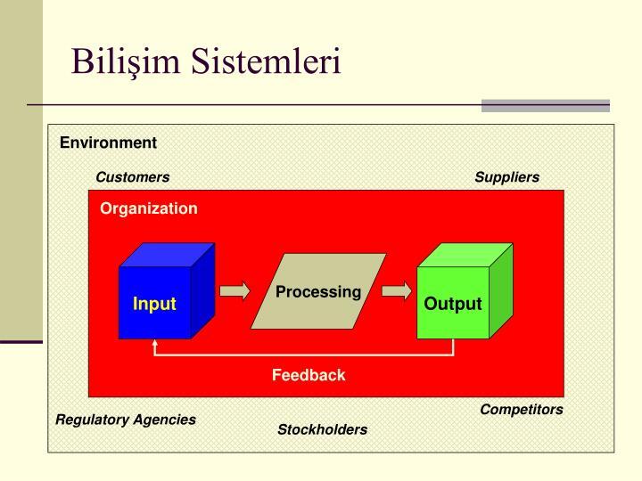 Bilişim Sistemleri