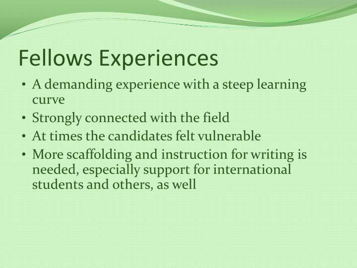 Fellows Experiences