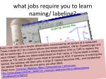what jobs require you to learn naming labeling
