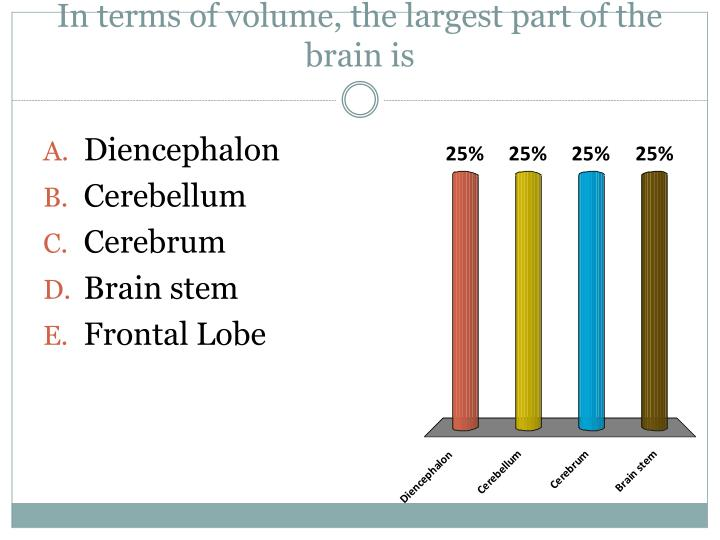 In terms of volume, the largest part of the brain is