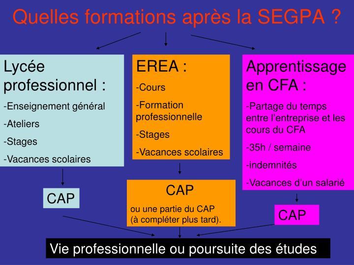 Quelles formations après la SEGPA ?