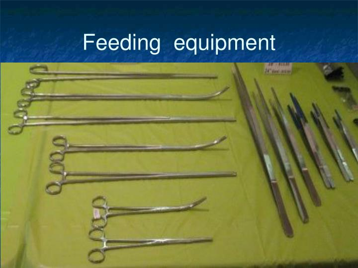 Feeding  equipment