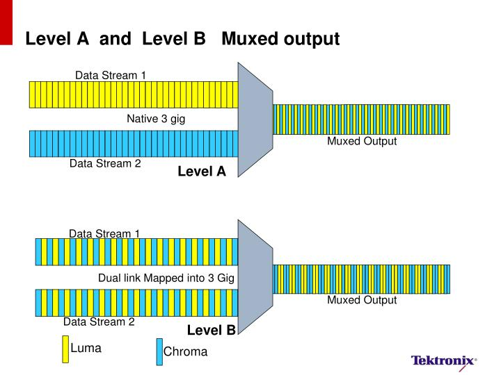 Level A  and  Level B   Muxed output