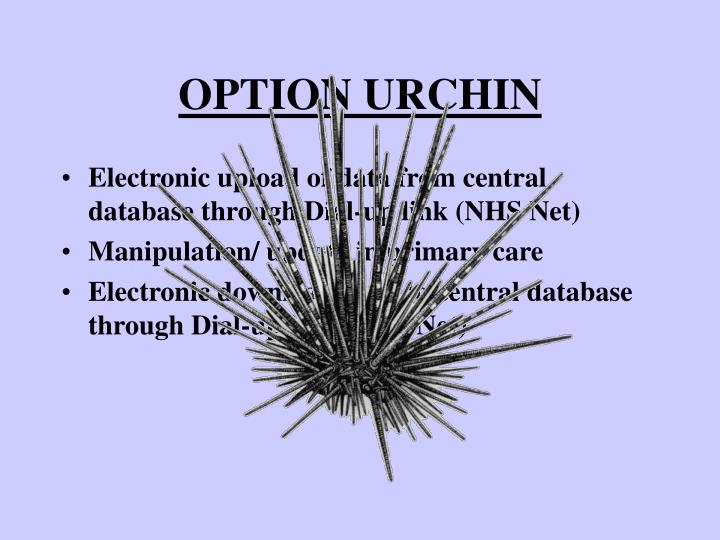 OPTION URCHIN