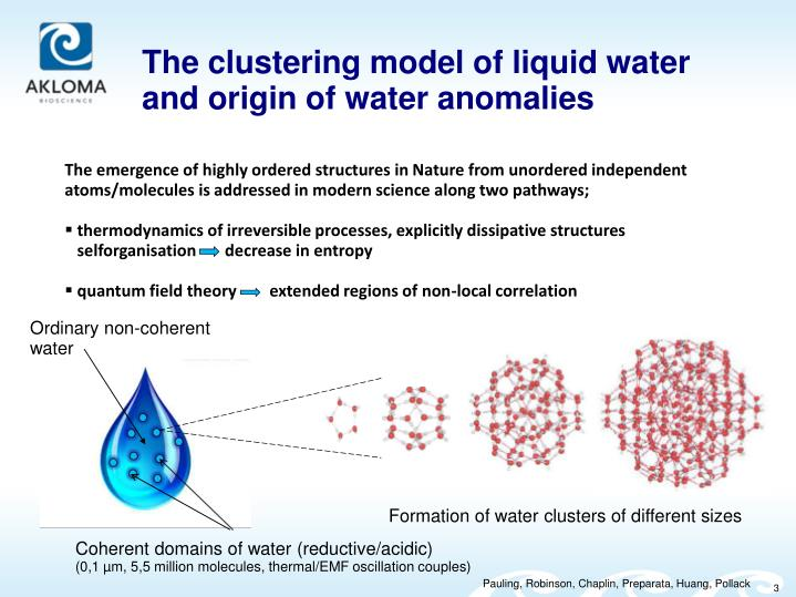 The clustering model of liquid water