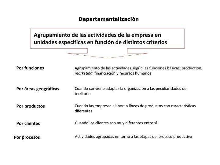 Agrupamiento de las actividades de la empresa en unidades específicas en función de distintos
