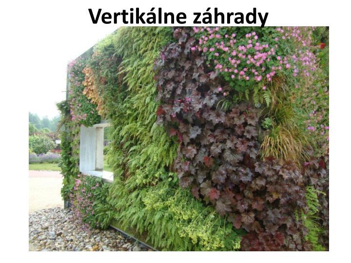 Vertikálne záhrady