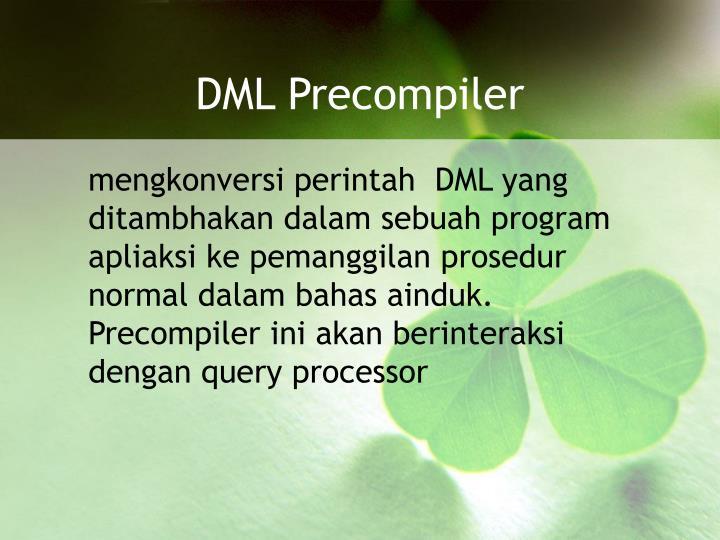 DML Precompiler