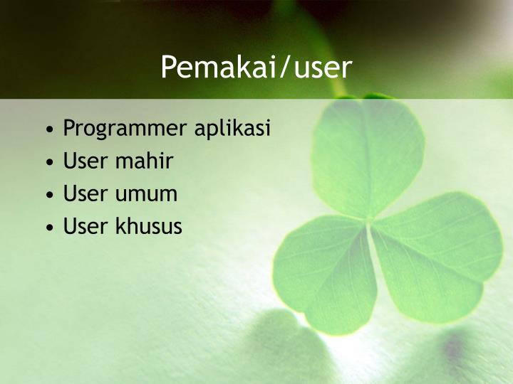 Pemakai/user