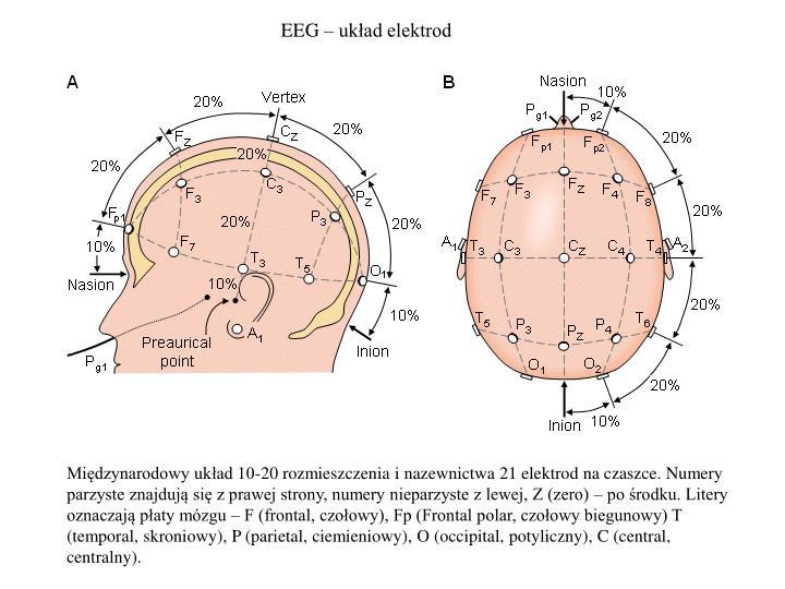 EEG – układ elektrod