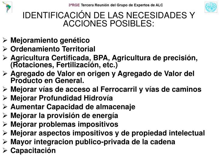 IDENTIFICACIÓN DE LAS NECESIDADES Y ACCIONES POSIBLES: