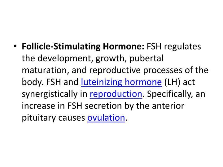 Follicle-Stimulating Hormone: