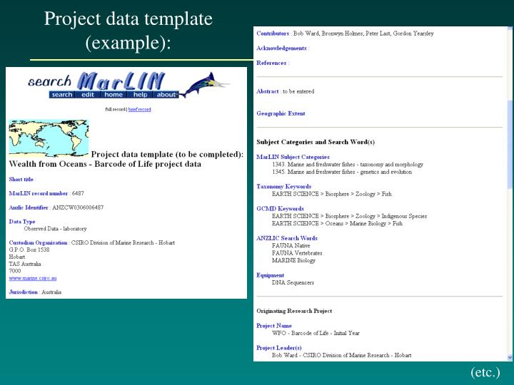 Project data template (example):