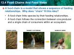 a food chain is a model that shows a sequence of feeding relationships why does chain fit this idea