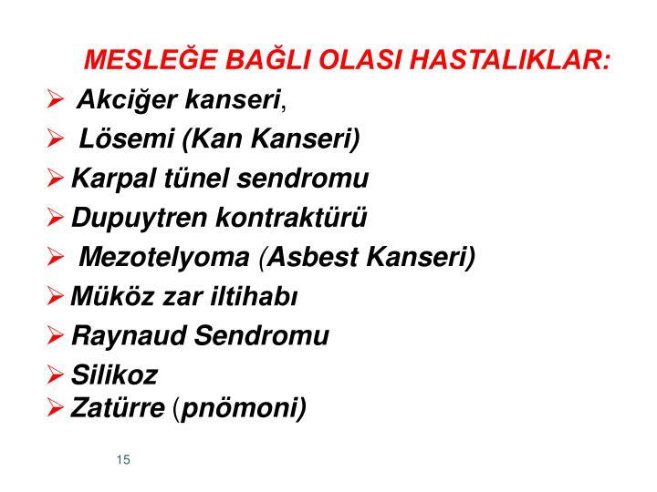 MESLEE BALI OLASI HASTALIKLAR: