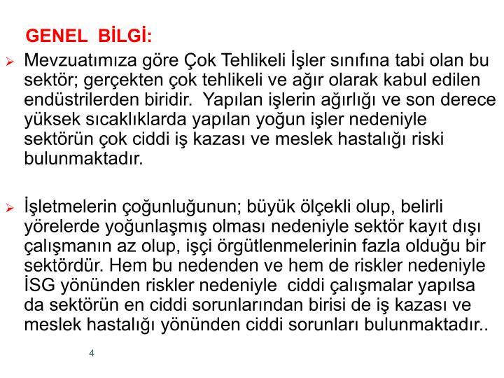GENEL  BLG: